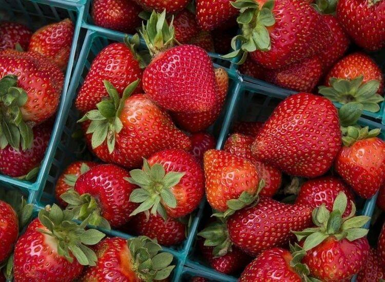 aliment bon gencives dents fraises acide malique