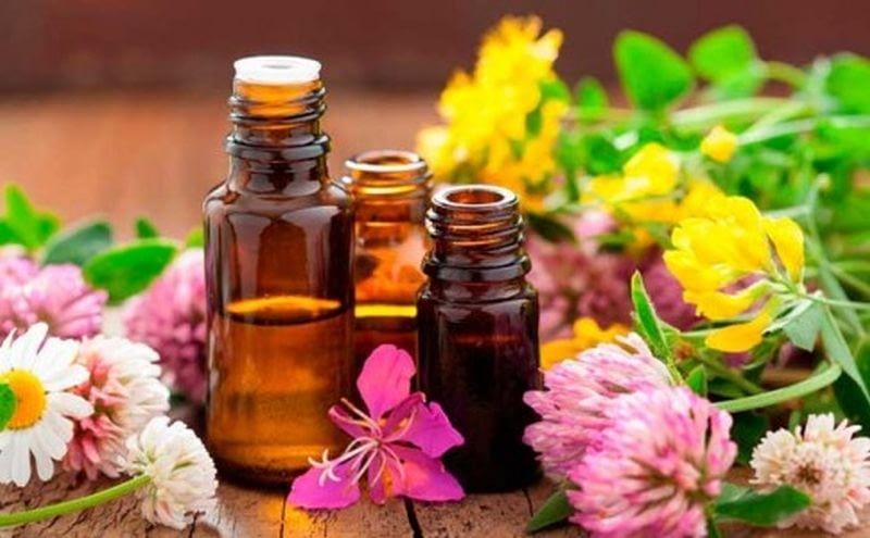 aceites esenciales propiedades 485x300 1
