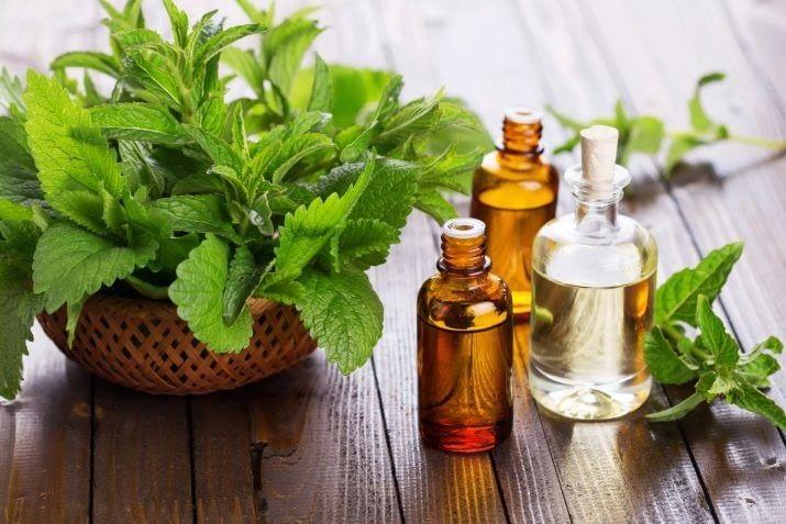 aromat pachuli v parfyumerii 13 2